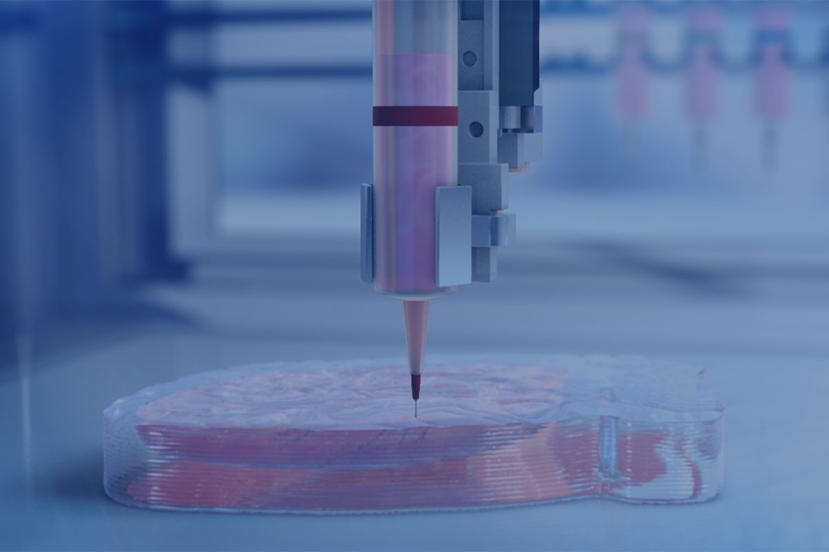 BIOLIFE4D plans to optimize a process for 3D bioprinting human hearts